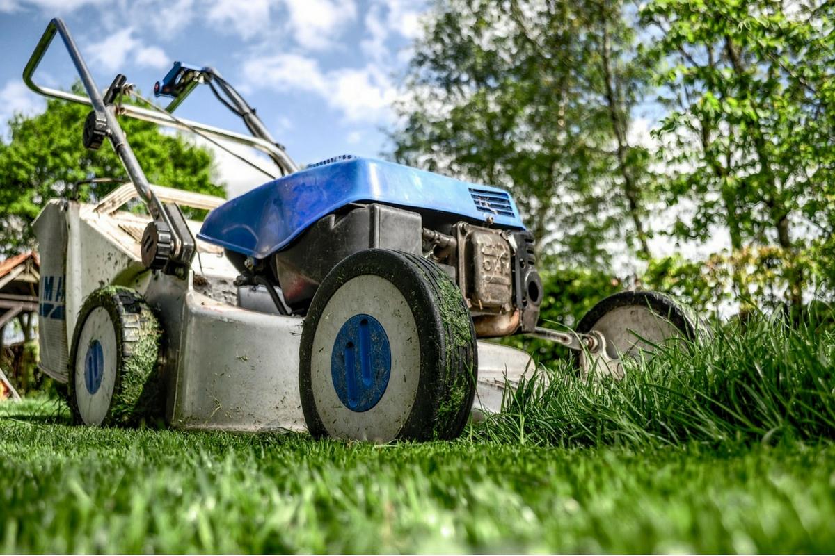 servicio de jardineria y paisajismo